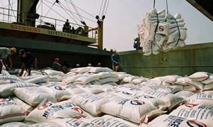 Xuất khẩu 300.000 tấn gạo sang Indonesia