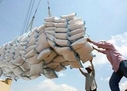 Xử lý việc xuất gạo tiểu ngạch sang Trung Quốc