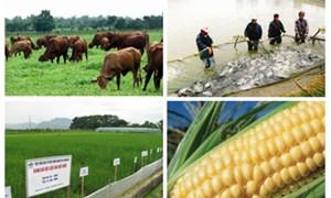 Bộ Tài chính phối hợp thực hiện chính sách hỗ trợ giống cây trồng, vật nuôi, thủy sản
