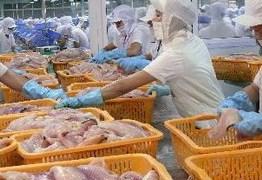 Nhập khẩu cá da trơn Việt Nam 9 tháng vào Mỹ tăng 27%