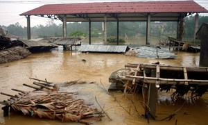 Công điện khẩn  của Bộ Tài chính gửi các đơn vị, hệ thống thuộc Ngành  về triển khai gấp các nhiệm vụ phòng, chống, khắc phục bão lũ