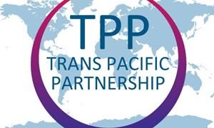 91% doanh nghiệp đánh giá tích cực về TPP