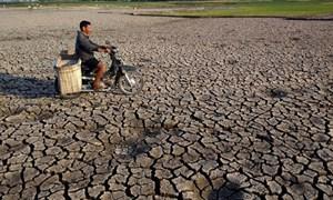 Khang Điền ủng hộ 26 tỉ đồng hỗ trợ phòng chống dịch và hạn mặn