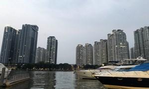 TP. Hồ Chí Minh thu hút thêm 100 dự án vốn đầu nước nước ngoài