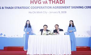 Lễ ký kết hợp đồng hợp tác chiến lược giữa HVG và THADI