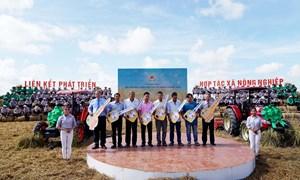 An Giang tập trung nhiệm vụ trọng tâm ngành nông nghiệp