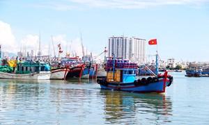 Gian nan thu hồi nợ tàu đóng theo Nghị định 67
