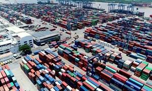 Cục Hải quan TP. Hồ Chí Minh lập tổ phản ứng nhanh hỗ trợ doanh nghiệp xuất nhập khẩu