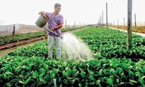 Tìm giải pháp để nông sản đồng bằng sông Cửu Long vượt khó mùa Covid-19
