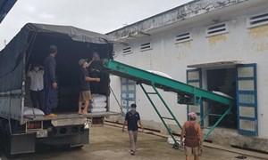 Chủ động mọi tình huống để hoàn thành tốt nhiệm vụ xuất cấp gạo hỗ trợ