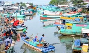 Mục tiêu ngành kinh tế biển, thuần biển đóng góp khoảng 40-45% tổng thu ngân sách