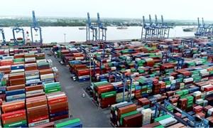 Giải phóng xong 1.216 container hàng quá cảnh bị tồn tại cảng Cát Lái