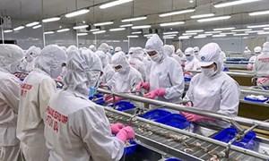 """Giải pháp duy trì sản xuất, giữ vững """"vùng xanh"""" doanh nghiệp"""