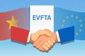 Thay đổi để tận dụng cơ hội từ EVFTA