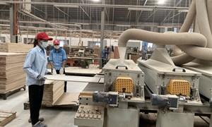Phát triển các cụm công nghiệp theo hướng bền vững