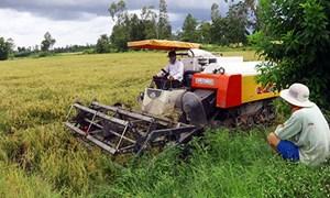 Thay đổi sản xuất nông nghiệp để phát triển đời sống nông thôn