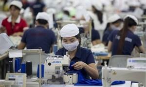 Dự báo tình hình sản xuất kinh doanh sẽ tốt hơn trong quý IV