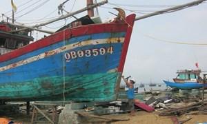 Ngư dân vươn khơi xa