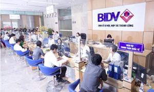 BIDV trả 2.700 tỷ đồng cổ tức cho Bộ Tài chính
