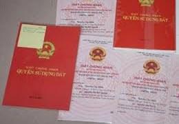 HoREA kiến nghị quận, huyện TP. Hồ Chí Minh và Hà Nội được cấp sổ đỏ