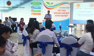 Cục Thuế TP. Hồ Chí Minh đối thoại với doanh nghiệp thủy sản, thực phẩm