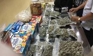 Hải quan Tân Sơn Nhất phát hiện vụ vận chuyển 4kg cần sa