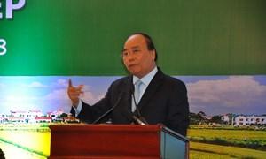 Tháo gỡ khó khăn, thu hút doanh nghiệp đầu tư vào lĩnh vực nông nghiệp