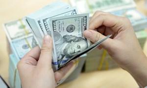 Tỷ giá trung tâm tiếp tục lập kỷ lục mới ngày đầu năm