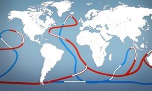 [Video] Dòng hải lưu điều tiết khí hậu châu Âu có thể ngừng chảy