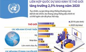 [Infographics] Liên hợp quốc dự báo kinh tế thế giới tăng trưởng 2,5% trong năm 2020