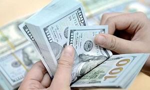 Tỷ giá ngoại tệ ngày 21/1: USD tăng, Euro giảm