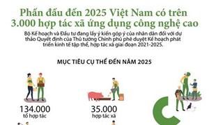 [Infographics] Phấn đấu đến 2025, Việt Nam có hơn 3.000 hợp tác xã ứng dụng công nghệ cao