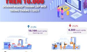 [Infographics] Trên 10.000 nghìn doanh nghiệp thành lập mới trong tháng 1/2021