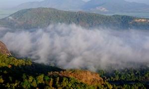 [Ảnh] Biển mây quanh núi Cô Tô