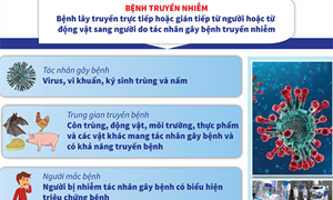 [Infographics] Dịch nCoV: Tìm hiểu về bệnh truyền nhiễm nhóm A