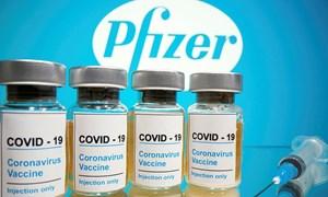 Pfizer ước tính doanh thu từ vắcxin đạt 15 tỷ USD trong năm 2021