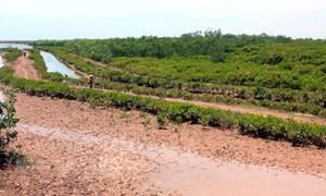 Những hoạt động làm suy thoái các vùng đất ngập nước ở Việt Nam