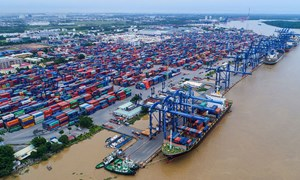 Thu ngân sách TP. Hồ Chí Minh tăng nhẹ trong tháng đầu năm