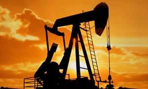 Thị trường năng lượng thế giới đang bị chi phối bởi những yếu tố nào?