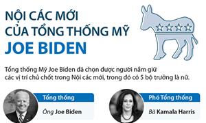 [Infographics] Tổng thống Mỹ Joe Biden lựa chọn thành viên chủ chốt trong Nội các mới như thế nào?