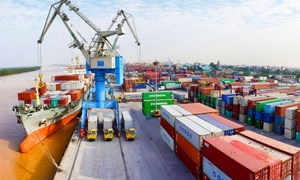 Doanh nghiệp đăng ký tờ khai xuất nhập khẩu tăng 59% trong dịp Tết