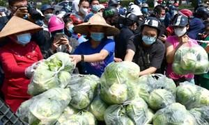 [Video] Cộng đồng mạng kêu gọi giải cứu nông sản cho bà con vùng dịch