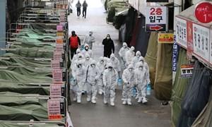 [Infographics] Dịch COVID-19: Hàn Quốc nâng cảnh báo lên mức cao nhất