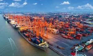 Xuất nhập khẩu tăng 31,1% trong nửa đầu tháng 2/2021
