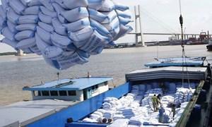 [Infographics] Các thị trường xuất khẩu gạo của Việt Nam năm 2019