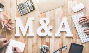 M&A diễn ra trong nhiều phân khúc bất động sản