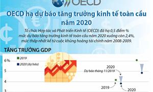 [Infographics] OECD hạ dự báo tăng trưởng kinh tế toàn cầu năm 2020