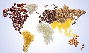 [Infographics] Các quốc gia hàng đầu thế giới về an ninh lương thực