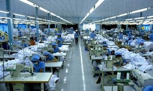 Dệt may chinh phục thị trường nội địa