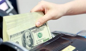 Giá USD liên tiếp lập kỷ lục mới